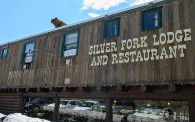 Silver Fork Lodge | Brighton, UT
